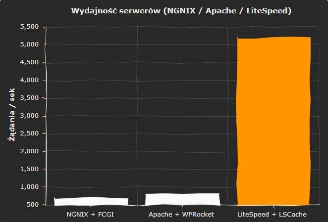 jaki-hosting-wybrac-serwer-litespeed